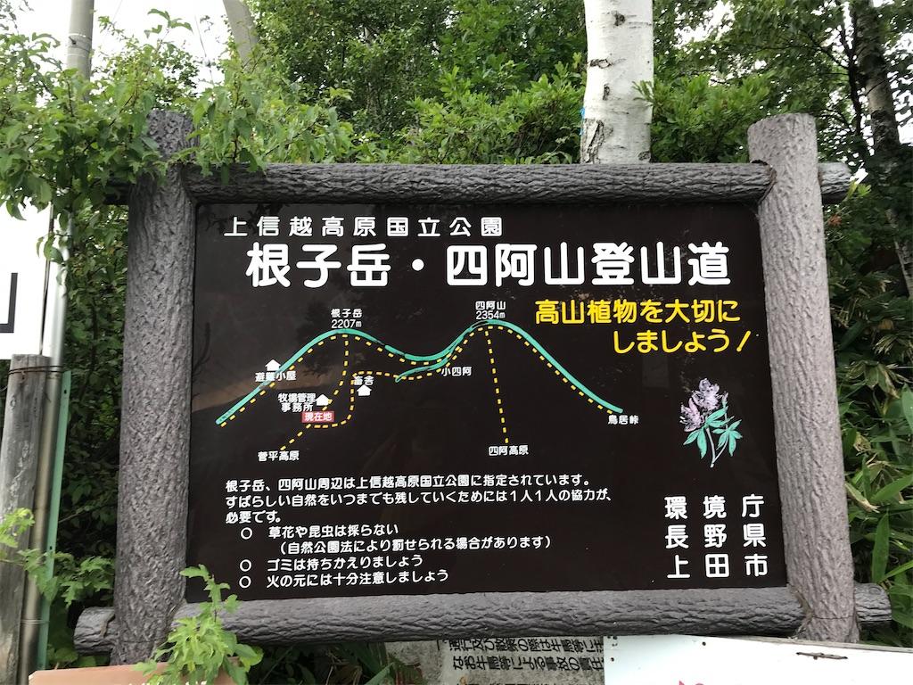 f:id:amefuri5kumanoko:20200910101619j:image