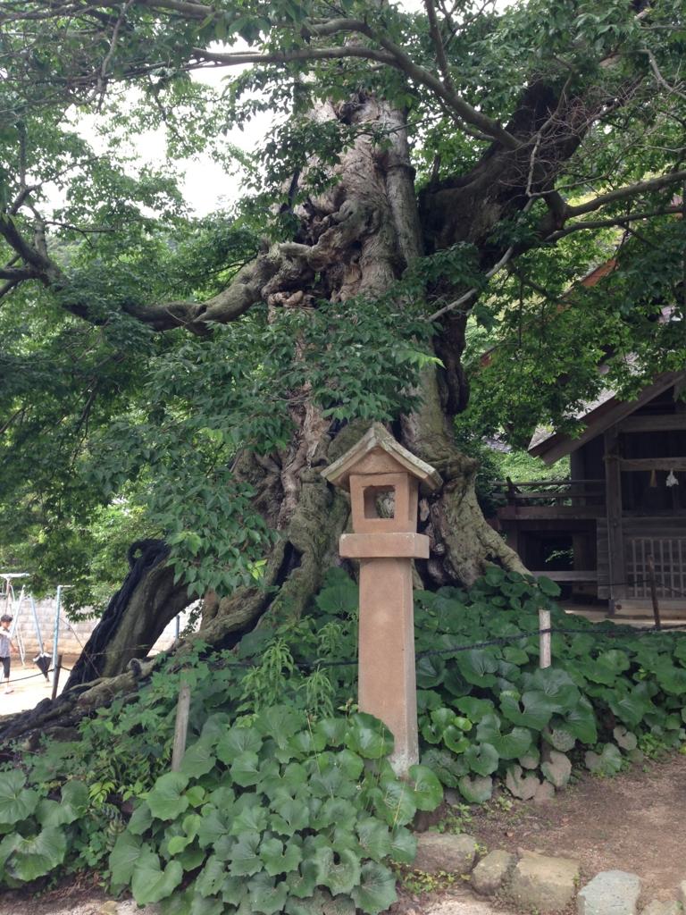 f:id:amenohitsuki:20160901225711j:plain