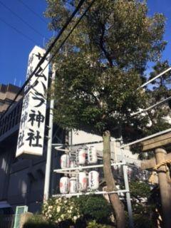 f:id:amenohitsuki:20170120021421j:plain