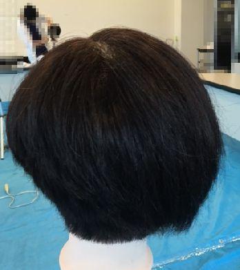 f:id:amenohitsuki:20170318015944j:plain