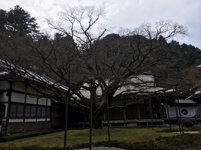 f:id:amenohitsuki:20170405222824j:plain