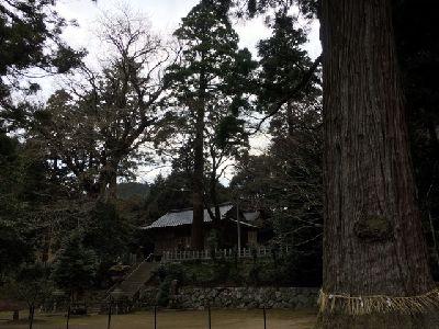f:id:amenohitsuki:20170405223848j:plain