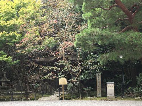 f:id:amenohitsuki:20190612235512j:plain
