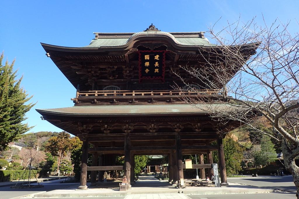 f:id:ametsuchi-gohan:20190111181055j:plain