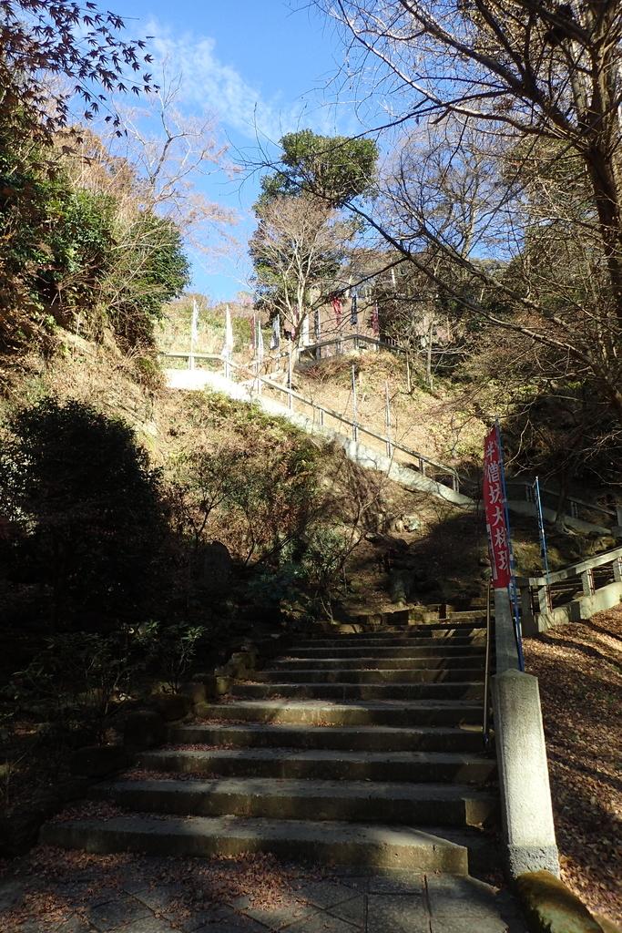 f:id:ametsuchi-gohan:20190111181118j:plain