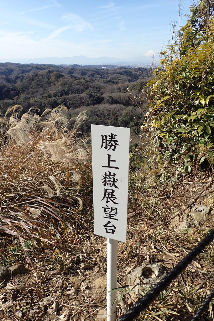 f:id:ametsuchi-gohan:20190111181234j:plain