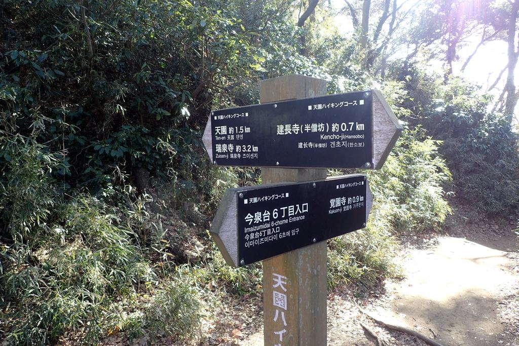 f:id:ametsuchi-gohan:20190111181522j:plain