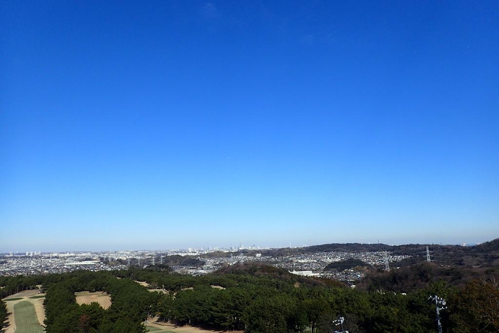 f:id:ametsuchi-gohan:20190111181636j:plain