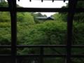 『京都新聞写真コンテスト 東福寺 青もみじ』