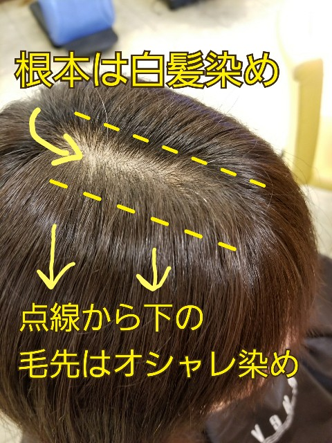 f:id:ami_tanaka:20171101220247j:image