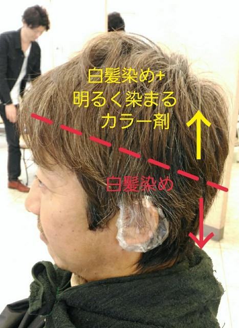 f:id:ami_tanaka:20180112081124j:image
