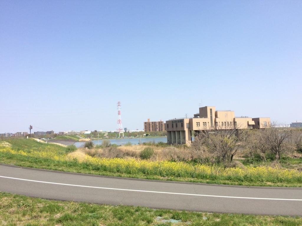 荒川サイクリングロードから行ける彩湖は最高