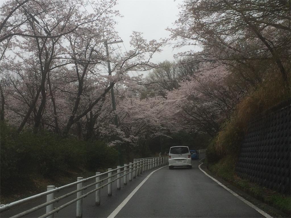 f:id:amikasai31:20170408113250j:image