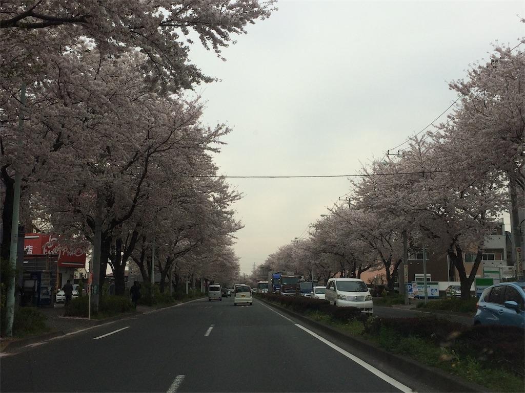 f:id:amikasai31:20170411011452j:image