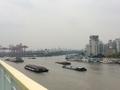 揚子江河口