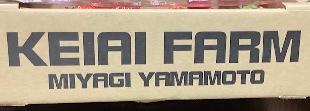 f:id:amimono-seikatsu:20210306140744j:plain