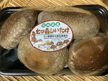 f:id:amimono-seikatsu:20210413181546j:plain