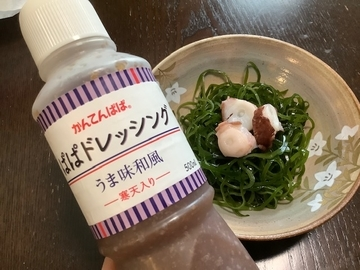 f:id:amimono-seikatsu:20210606102841j:plain