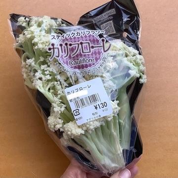 f:id:amimono-seikatsu:20210608204252j:plain