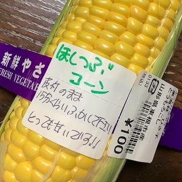 f:id:amimono-seikatsu:20210814220721j:plain