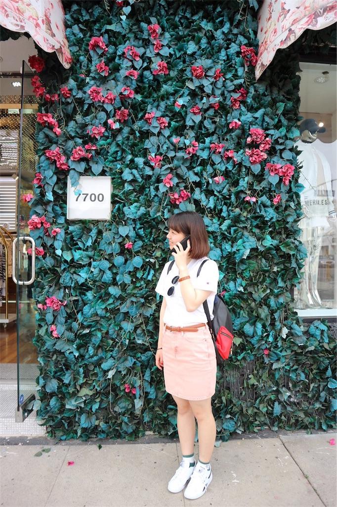 f:id:amiso_dayo:20170311141555j:image