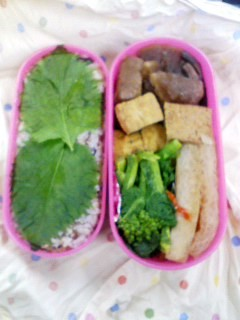 f:id:amiyoshida:20080311120342j:image:w100,left