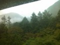 霧で、もやってる