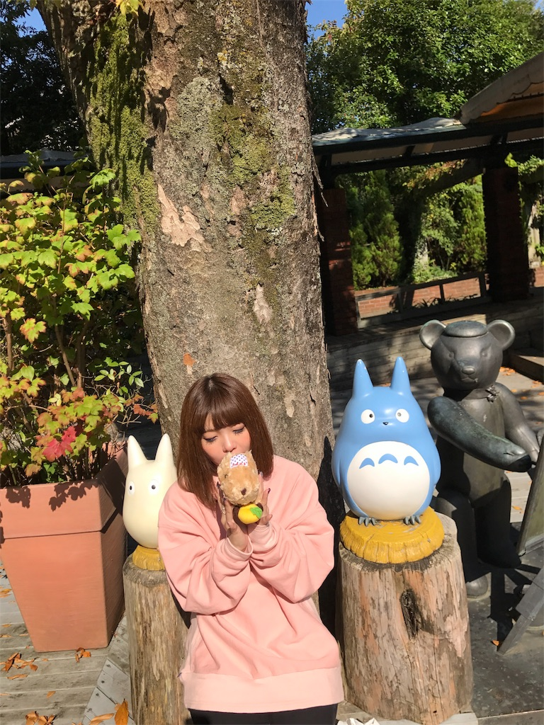 f:id:amoshiratama:20171126192412j:image