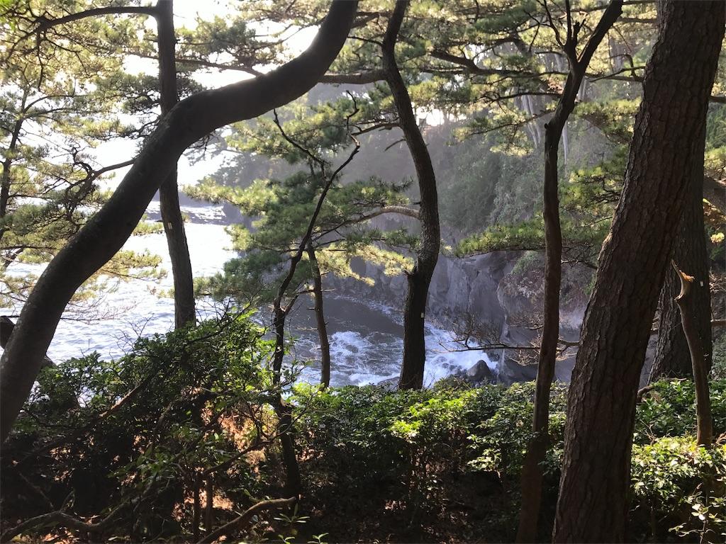 f:id:amoshiratama:20171126192636j:image
