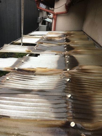 築古戸建 波板 トタン屋根 DIY修繕