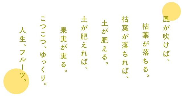 f:id:amucori00:20180104141154j:plain