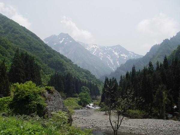 雪渓残る新潟の渓相