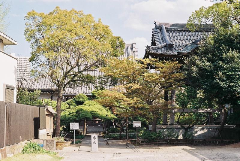 f:id:amuroikimasu:20180408180242j:plain
