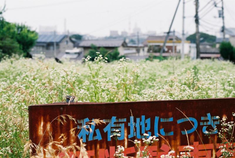 f:id:amuroikimasu:20180610153003j:plain