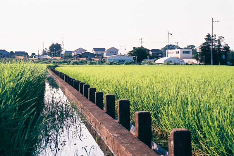 f:id:amuroikimasu:20180722203728j:plain