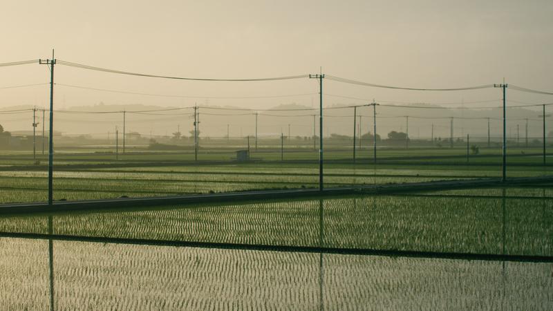 f:id:amuroikimasu:20200518080303j:plain