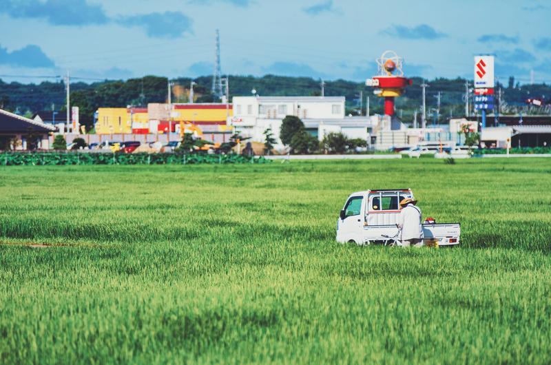f:id:amuroikimasu:20200801200314j:plain