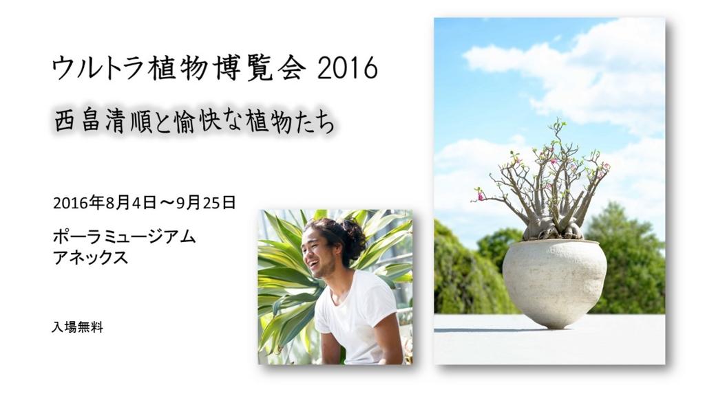 f:id:amuzen:20160827135531j:plain