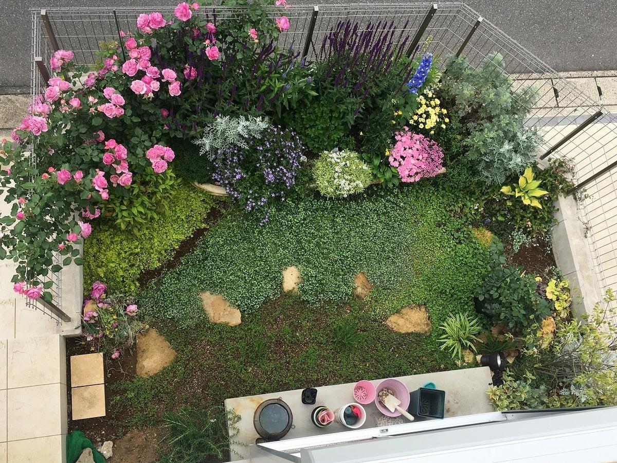 複数のグランドカバー 上空からの様子 初心者向け 庭のdiy
