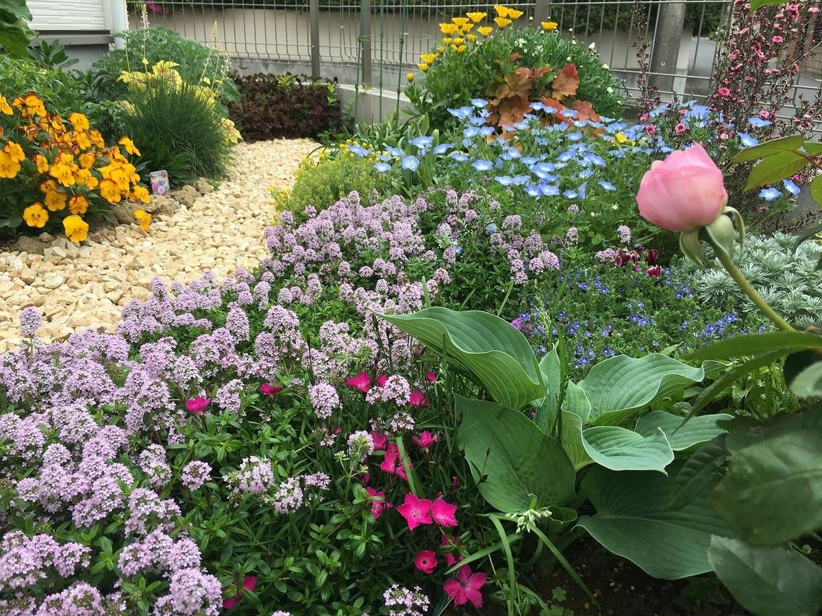 庭づくり 花壇 diy 花 ガーデニング 変遷 簡単 ブログ