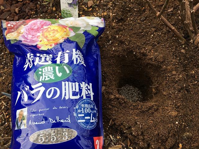 バラの肥料と、穴に入れたところ