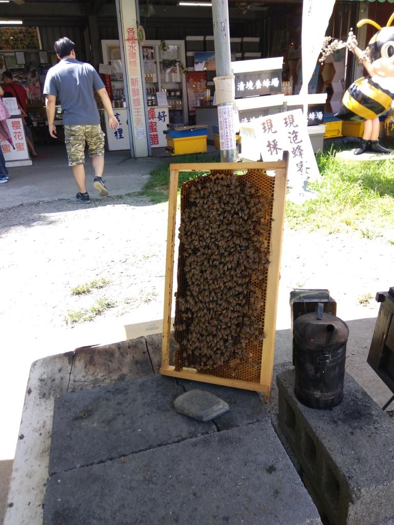 清境農場の蜂