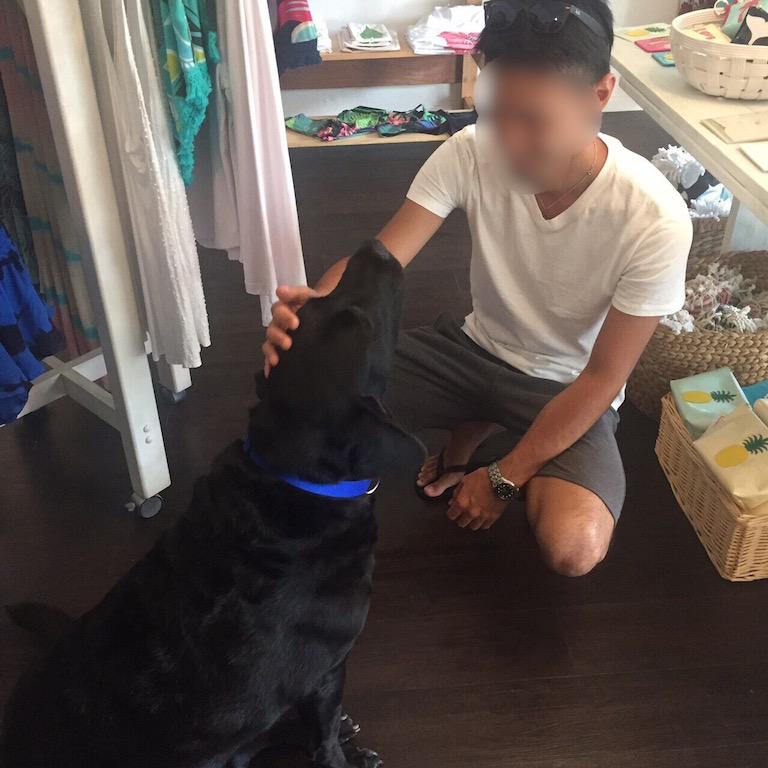 hawaii-kailua-犬2