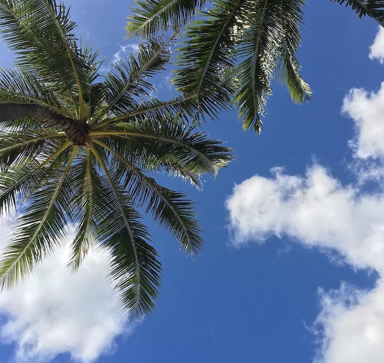hawaii-2017-ハワイ