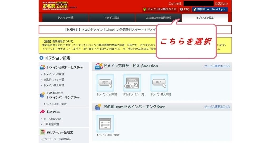 お名前.comドメインNavi画面のオプション設定タブ