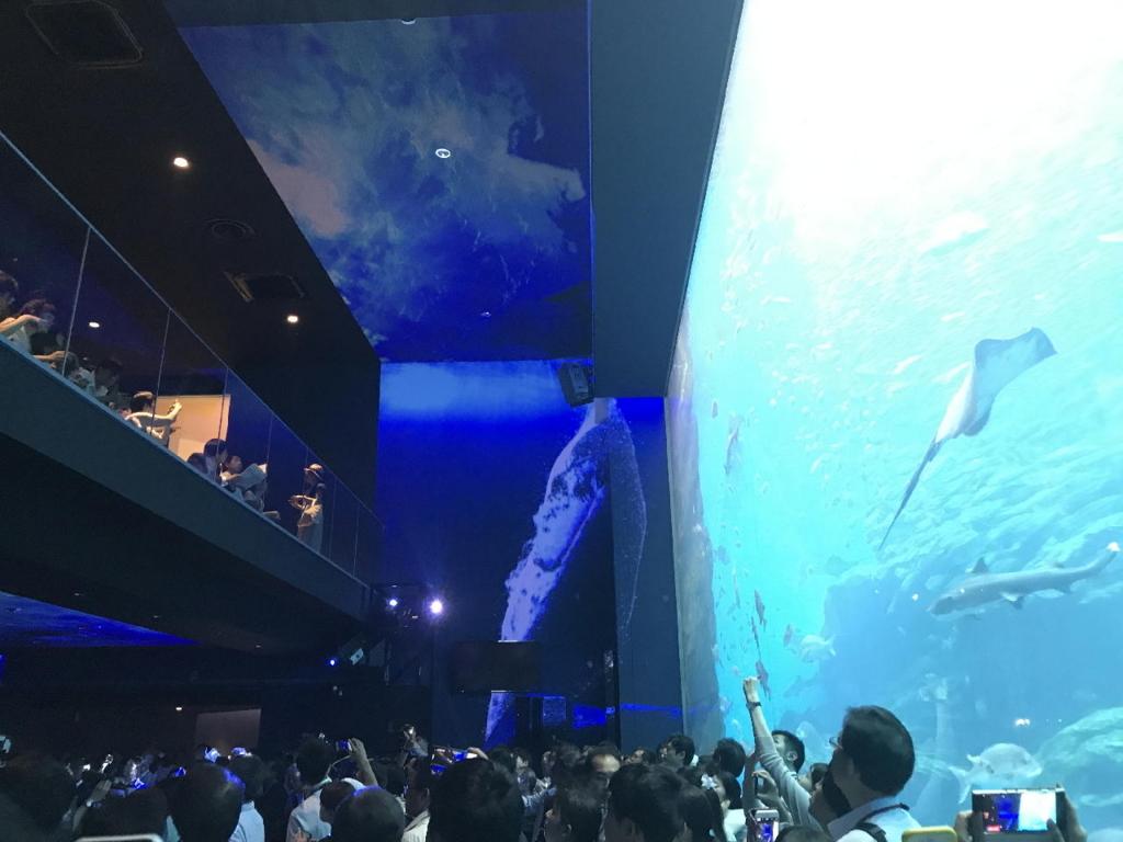 仙台うみの杜水族館の巨大水槽と360°大パノラマプロジェクションマッピング