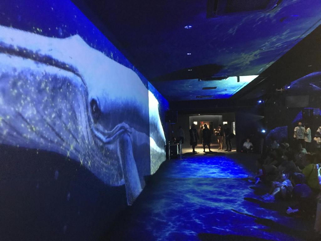 仙台うみの杜水族館の360°大パノラマプロジェクションマッピング(通路側)