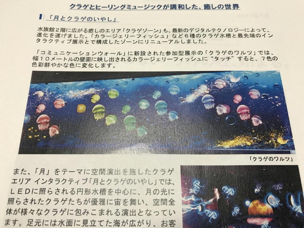 仙台うみの杜水族館の月とクラゲのいやし