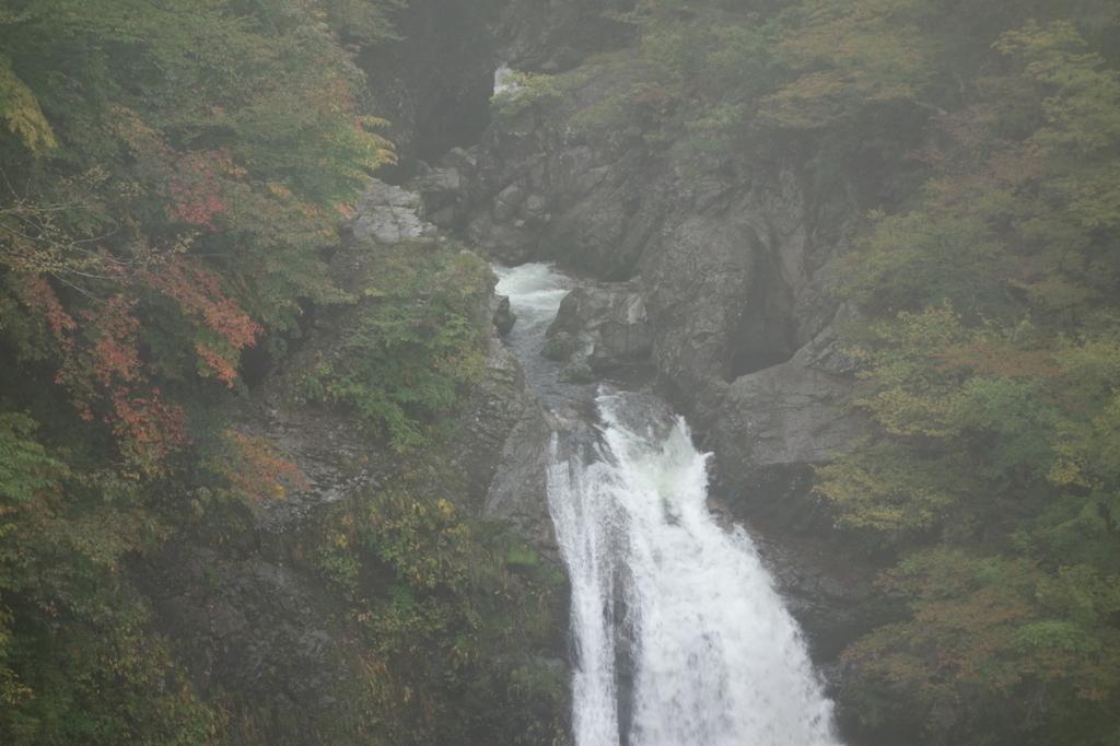 滝見台から見る秋保大滝(上部)