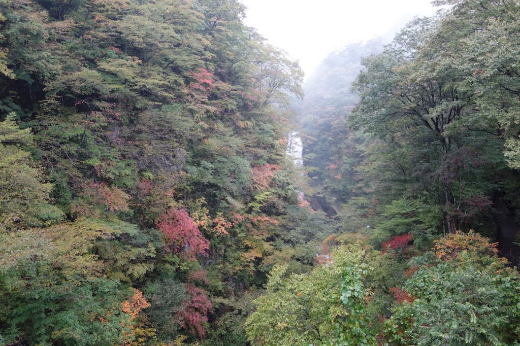 秋保大滝滝壺への道(不動滝橋上から見る秋保大滝)